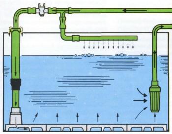 Фильтр для очистки воды аквариума своими руками